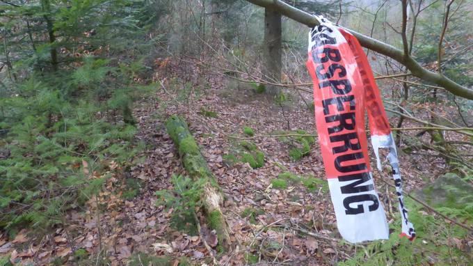 Schädel-Fund in Bad Säckingen