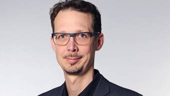 Michael Hermann, Politologe