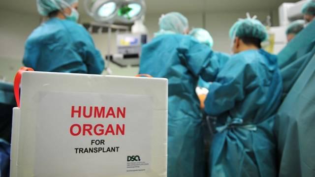 Fachkräfte sollen gezielt für mehr Organspenden sorgen – Kantone bocken bei der Bezahlung. Foto: J.Rey - DSO