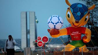 Fuleco, das Maskottchen der WM in Brasilien