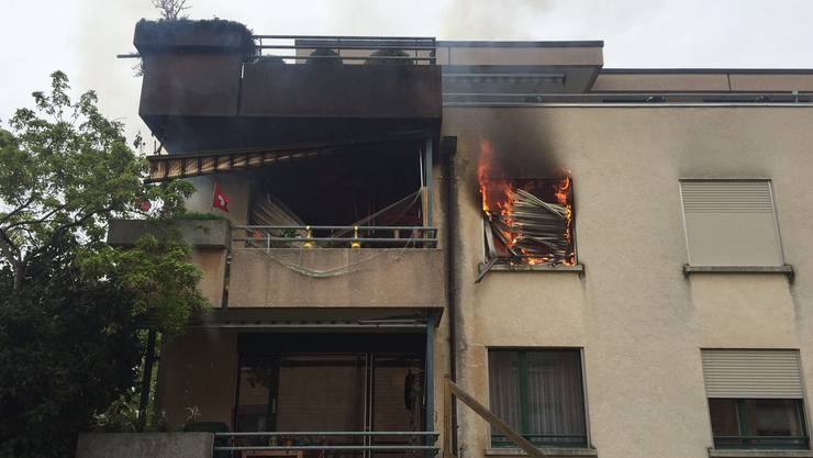 Beim Brand in der Reinacher Wohnung starben zwei Wellensittiche.