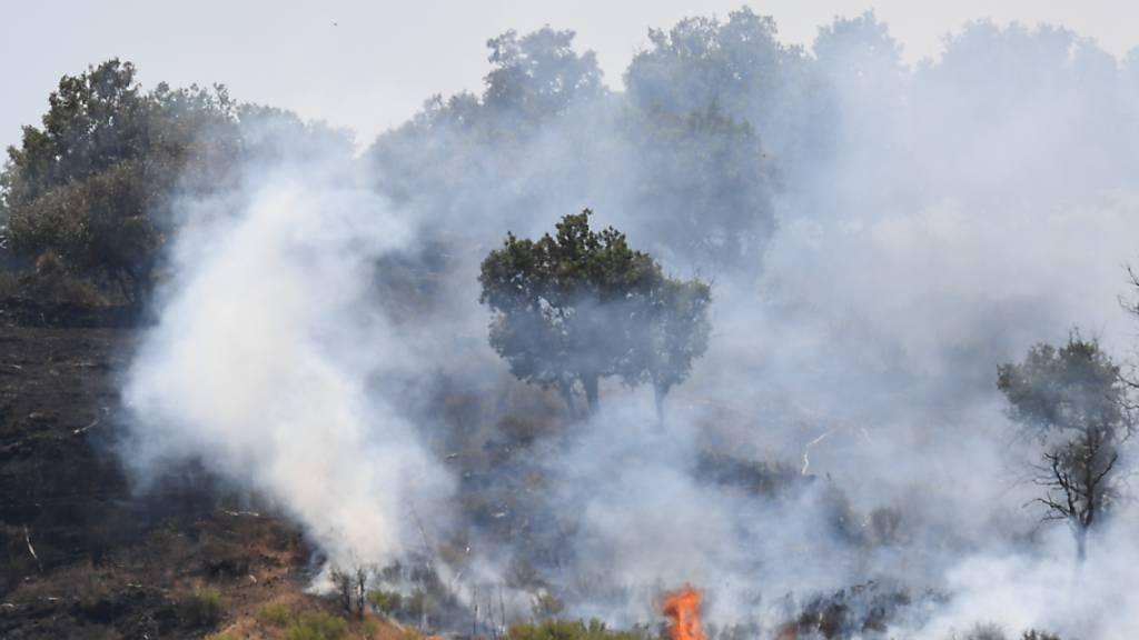 Flammen lodern auf in einem Pinienwald, an den Hängen des Ätnas. Die südlichen Regionen Siziliens, Sardiniens, Kalabriens und auch Mittelitaliens, wo Rekordtemperaturen erwartet werden, wurden von Waldbränden schwer getroffen. Foto: Salvatore Cavalli/AP/dpa