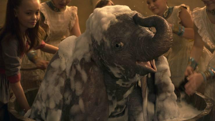 """Der Fantasy-Film """"Dumbo"""" hat am Wochenende vom 28. bis 31. März 2019 am meisten Besucher in die nordamerikanischen Kinos gelockt. (Archiv)"""