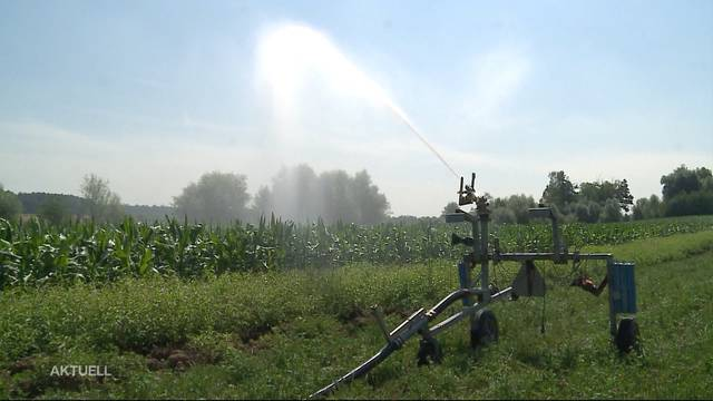 Kein Wasser mehr für Aargauer Bauern