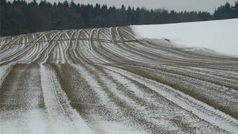 Sollte möglichst vermieden werden: Wer Gülle auf schneebedeckten Feldern verteilt, gefährdet damit Umwelt und Gewässer.Bruno Utz