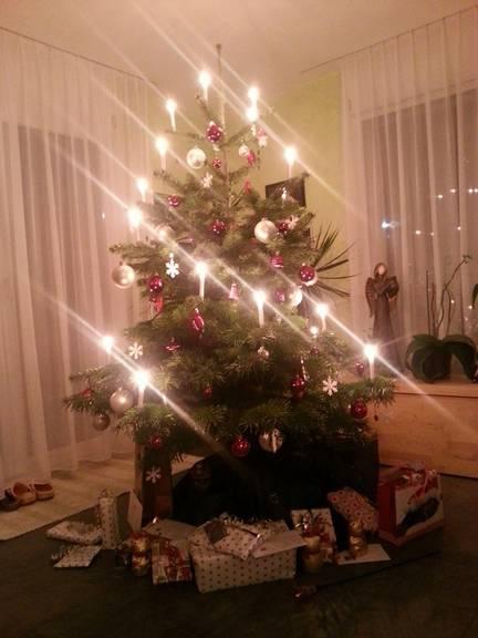 Der Christbaum von Shela