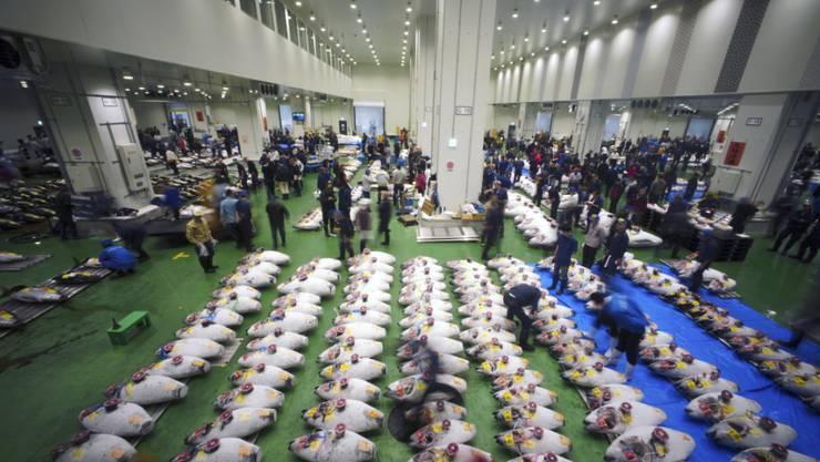 Erster Handelstag am neuen Standort: Der neue Fischmarkt von Tokio ist eröffnet worden.