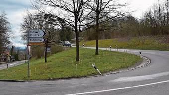 Der neue Rad- und Gehweg soll östlich der Bremgarterstrasse in den Hang gebaut werden.