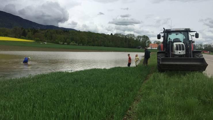 Das überschwemmte Feld zwischen Selzach und Bettlach.