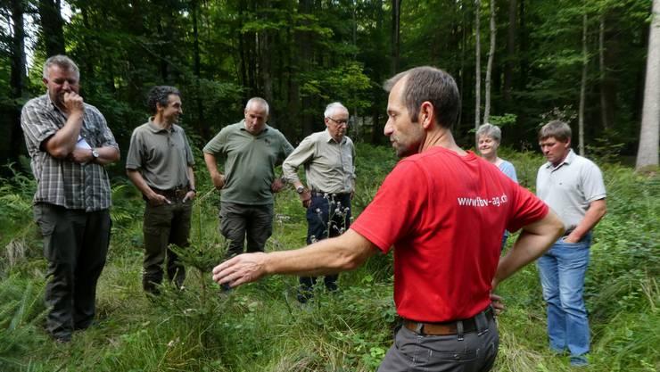 Der zuständige Förster, Daniel Schmutz vom Forstrevier Wasseramt, erläutert im Lohner Wald vor Vertreter der Bürgergemeinde Lohn und des zuständigen Jagdreviers die Problematik des zunehmenden Wildverbisses.