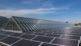 Eine Photovoltaik-Anlage (Symbolbild)