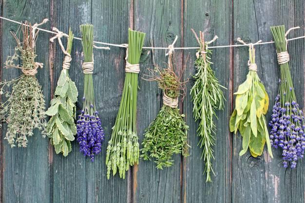 In der traditionellen Kräuterheilkunde setzt man schon lange auf verschiedene Düfte.