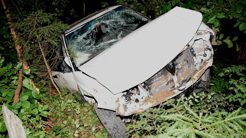 Autofahrer landet im Bachbett