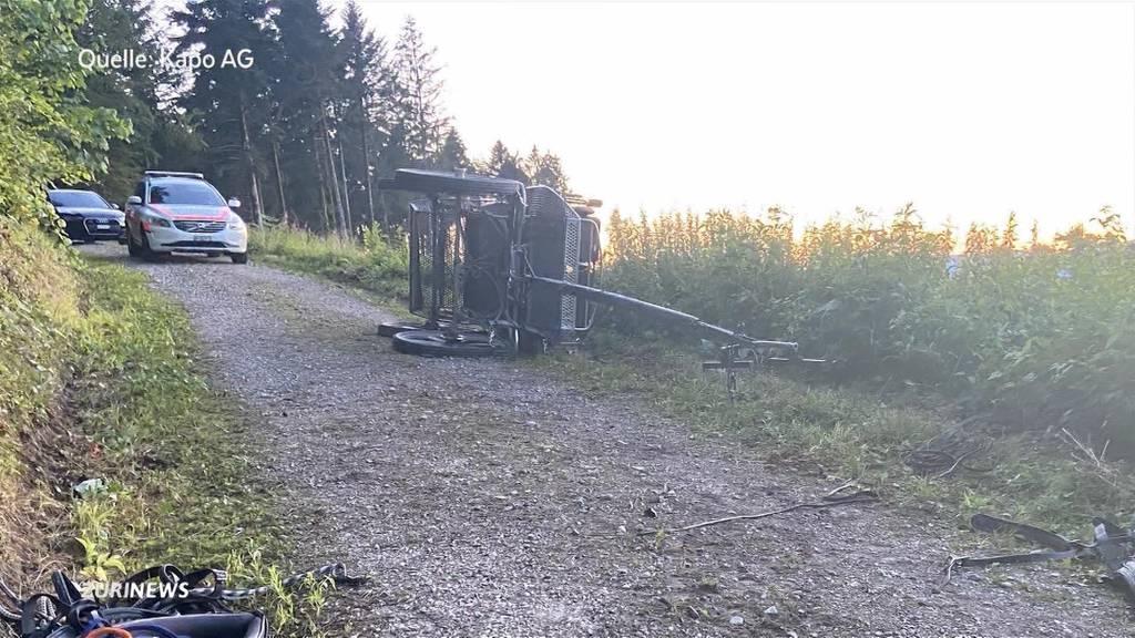 Kutschenunfall in Brittnau fordert fünf Verletzte
