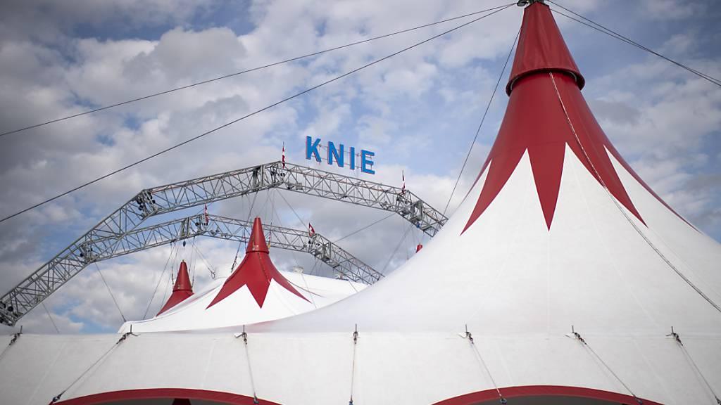 Der Circus Knie klagt vor dem St. Galler Handelsgericht gegen eine Online-Plattform. Gestritten wird um Internet-Ticketverkäufe, Markenrechte und den Vorwurf des unlauteren Wettbewerbs (Archivbild).