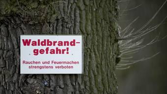Das Waldbrandrisiko ist in Fischenthal und Hinwil kantonsweit am höchsten. (Symbolbidl)