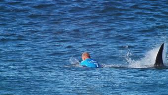 Hai attackiert Surfstar Mick Fanning.