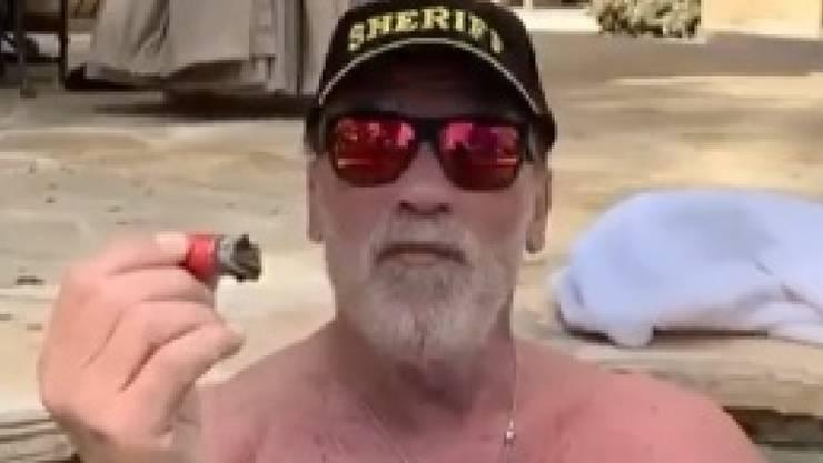 Mit Zigarre im Pool: Filmstar Arnold Schwarzenegger.