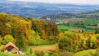 Der bunte Laubbestand der Bäume lässt erkennen, dass der Herbst angebrochen ist. Dieses Farbenspiel zeigt sich auch auf dem Kaistenberg mit Blick auf Kaisten. Dennis Kalt