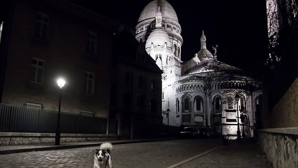 Hunde laufen eine menschleere Straße in der Nähe der Basilika Sacre-Coeur entlang. Aufgrund der Corona-Pandemie befindet sich Paris im Lockdown. Foto: Alain Jocard/AFP/dpa