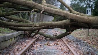 Friederike: Stürmisches Wetter in Europa (1)