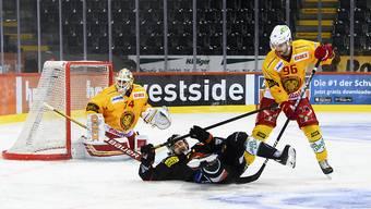 Der SC Bern fällt gegen Langnau ein weiteres Mal hin.