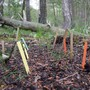Das Forscherteam machte sich ein Bewässerungsexperiment im Kanton Wallis zunutze.