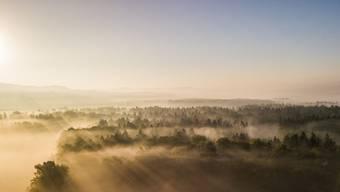 Leserbilder: Der frühe Herbst im Aargau