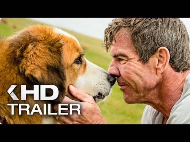 Im Trailer zum Film ist die fertige Szene ab Minute 1:34 zu sehen.