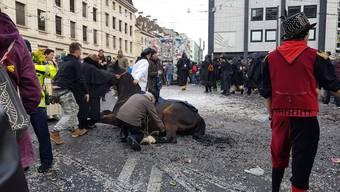 Pferd Unfall Montagscortège