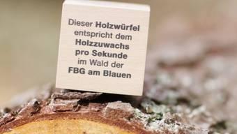 Binding Waldpreis 2012 geht an die Forstbetriebsgemeinschaft Am Blauen