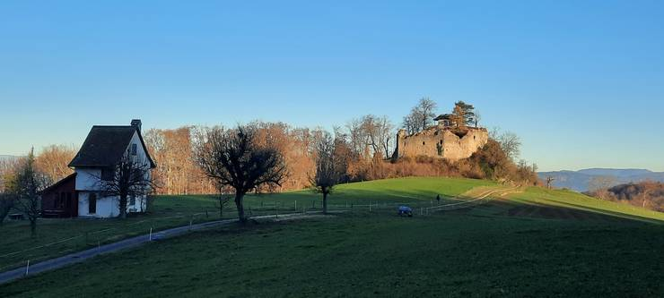 Ruine Neu Schauenburg