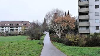 Dieser belastete Standort, die ehemalige Deponie Schoppen im Bereich des Chrebserwegs, wird untersucht.