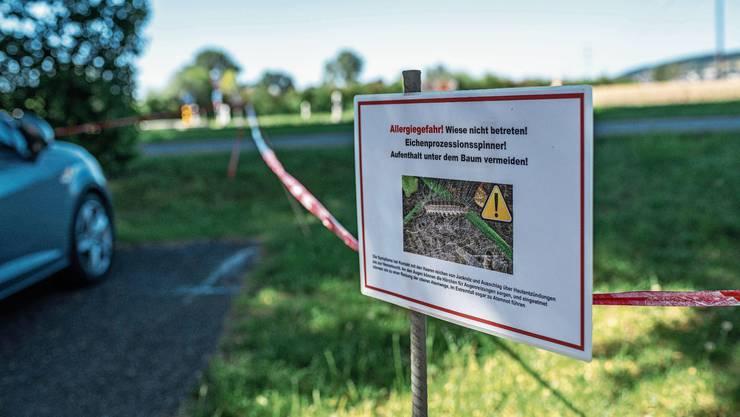Warnschilder weisen auf die Raupen-Gefahr hin.