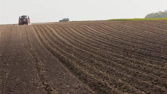 Pachtland: Für die meisten Landwirte unverzichtbar. Symbolbild