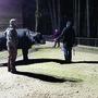 Wasserbüffel im Sikypark