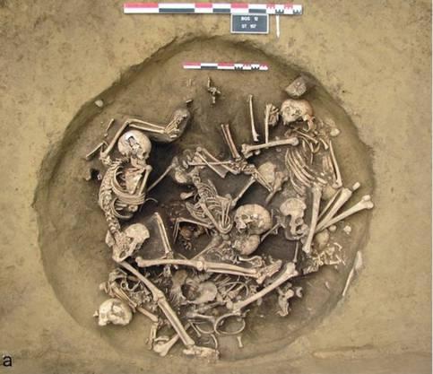 Die zwei Meter tiefe Grube war mit Knochen gefüllt.