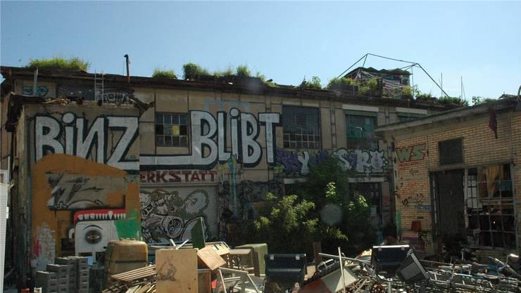Die Bewohner haben die seit 2006 besetzte Fabrik in der Binz geräumt. Nun lässt der Kanton Zürich, dem das Areal gehört, aufräumen.