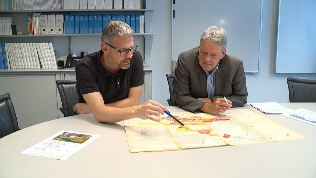 Schweinezucht-Streit: Gemeinde Meggen will Bauer Hofer helfen