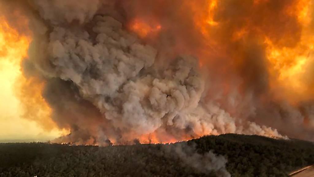 ARCHIV - Dichte Rauchwolken steigen über einem Wald auf, in dem ein Wildfeuer wütet. Die aktualisierten Klimapläne der Vertragsstaaten des Pariser Abkommens bleiben bisher weit hinter den Erwartungen zurück. Foto: Glen Morey/Glen Morey/dpa