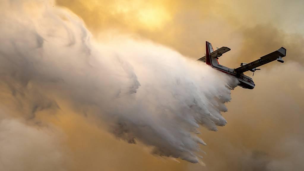 USA: Waldbrand breitet sich nahe Yosemite-Nationalpark aus