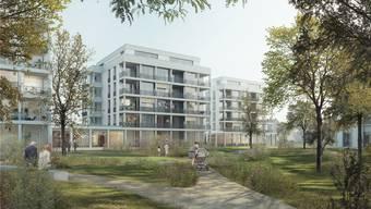 Das Siegerprojekt «Small World» des Architekturbüros Graber Pulver aus Zürich: Blick vom Park auf die 80 neuen Alterswohnungen.