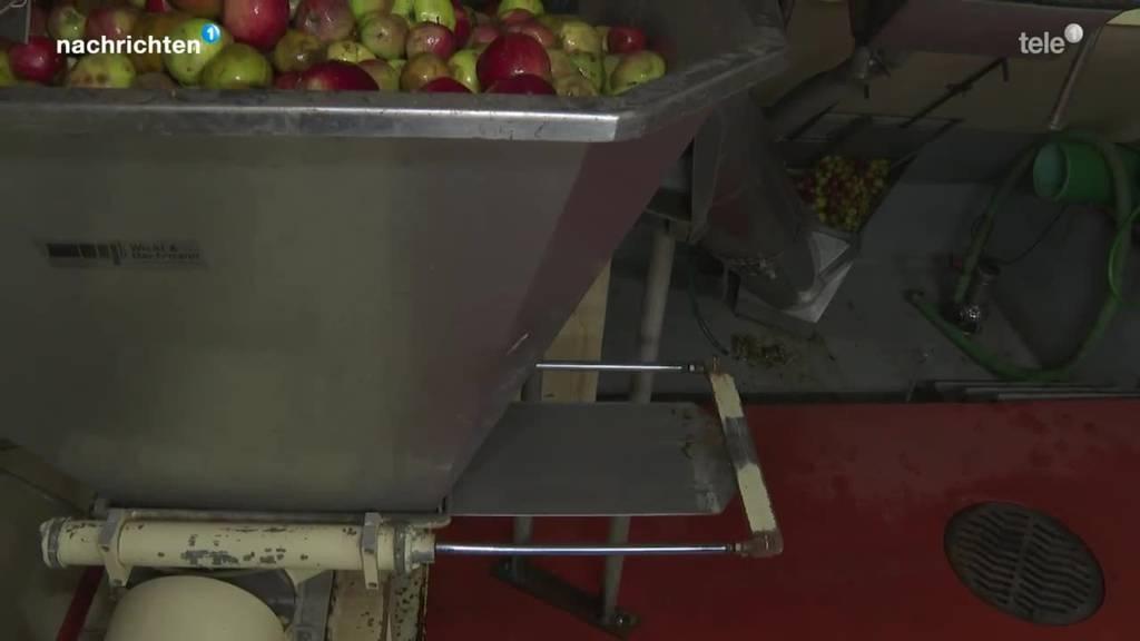 Schlechtes Jahr für Zentralschweizer Obstbauern