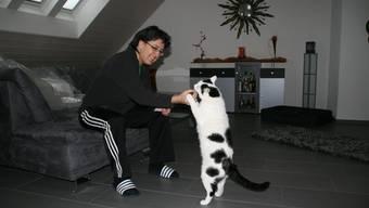 Quartierbewohnerin Anita Kottmann mit ihrer Katze Speedy: «Das sind schon viele Vermisstanzeigen. Irgendetwas ist komisch.»