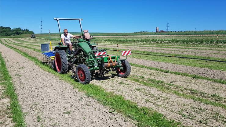 Landwirt Stefan Brunner vermietet sein Land quadratmeterweise, die Kunden erhalten dafür den Ertrag und können online auswählen, was gepflanzt wird.