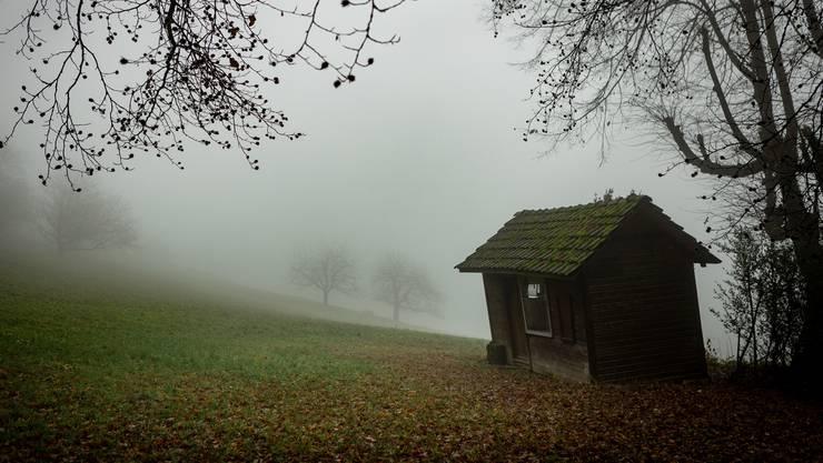 Die Chiembergmatt an der Saalhöhe bei Erlinsbach gehörte wohl einst den Edlen von Kienberg.