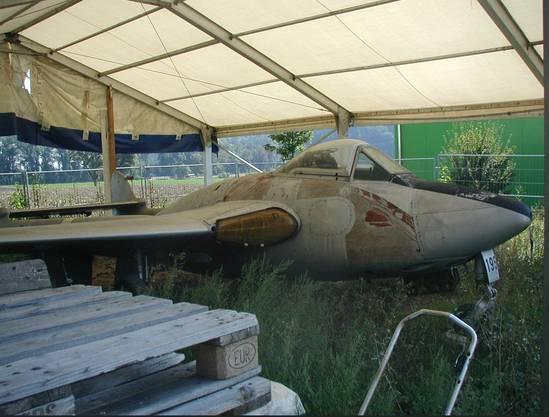 Die Natur holt sich schnell alles zurück. Der Vampire in seinem Zustand in Pieterlen. Der Rumpf des Flugzeuges besteht aus Pressholz.