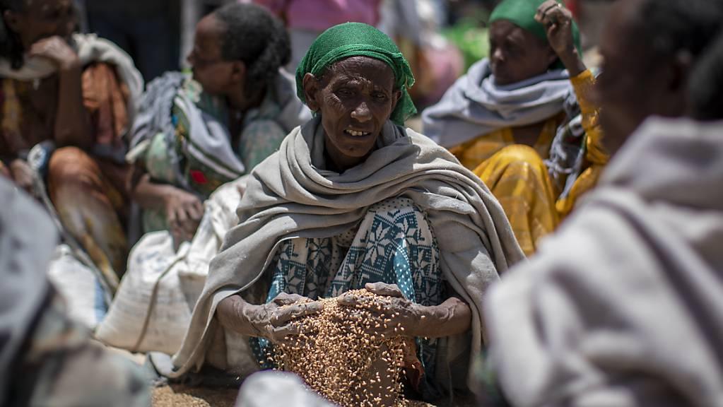 ARCHIV - Eine äthiopische Frau schaufelt Weizenkörner auf, nachdem diese von der «Relief Society of Tigray» im Norden Äthiopiens verteilt wurden. (Archivbild) Foto: Ben Curtis/AP/dpa