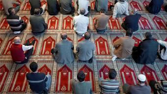 Muslime beim Gebet in einer Moschee. (Symbolbild)