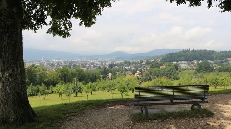 Der Heitere-Platz in Zofingen ist ein beliebter Ausflugsort. Kein Wunder bei dieser Aussicht.